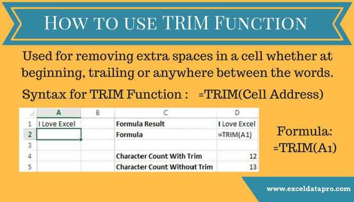 How to Use TRIM Function in Excel – Infographics