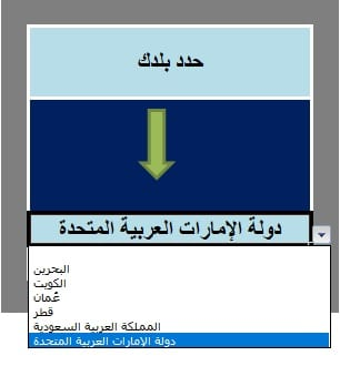 Arabic VAT Invoice Template