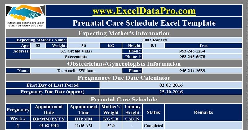 download prenatal care schedule excel template
